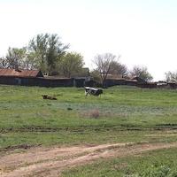 Юго=восточная окраина хутора
