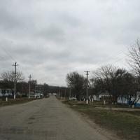 Центральная дорога в с. Ореховка