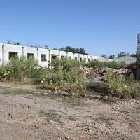 """А это результаты ельцинизма - руины крупнейшего животноводческого комплекса бывшего совхоза """"Дружба"""""""