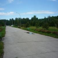 Бердск. Аллея в парке