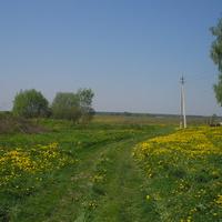 ул.преображенская