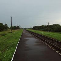 Дрогичин-Город – не станция, а платформа