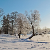 В Екатерининском парке