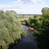Устье реки Таруса