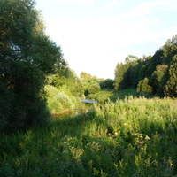 Река Таруса на выходе из города