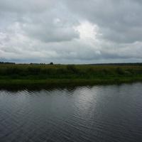 Река Молога. Возле устья Ривицы