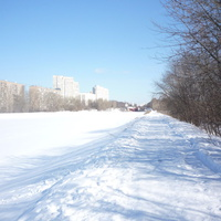 Канал под ослепительным весенним солнцем…  (севернее Волоколамского шоссе)