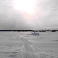 Белое безмолвие.Река Онега.Левобережье г.Онега.Легашевская.25.02.13г