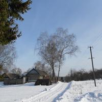 Зима в д.Дрозды