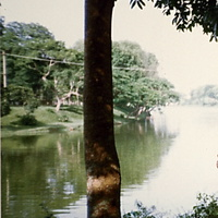 Озеро в зоопарке