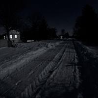 Левада взимку