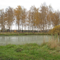 пруд ул. Лесная