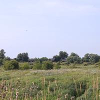 д. Федорово Село 2011 г.
