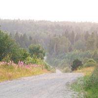 Doroga na Kuzhechkovo
