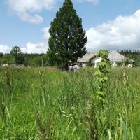 Вид на деревню Струя с «железки»
