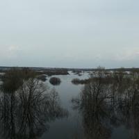 Ашитково, разлив Нерской