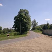 с.Станиславчик.Старый парк.