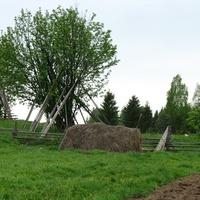 Вид за огород. Ягошур