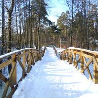 Деревянный мостик через ручей. Возле Кратова