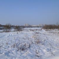 Пруд на реке Быковка. Окраина Жуковского