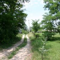 Улица в Куликах