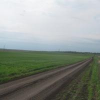 дорога в Софьинку