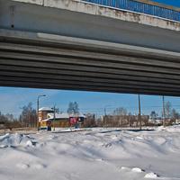 Вид из-под Краснофлотского моста
