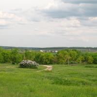 В центре бывшего хутора Пшеничного