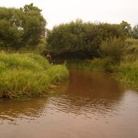 река Сорочевка (лягушатник)