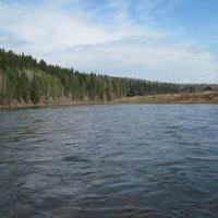 Усть-Тырым.Река Койва.