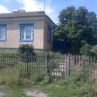 дом на Босова