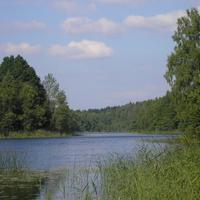 Озеро деревня Заболотье