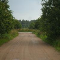 дорога в Хамонтово