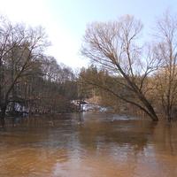 Река Кривинка