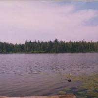 Струбно. Место, где был наш дом. Озеро около деревни. 1999 г.