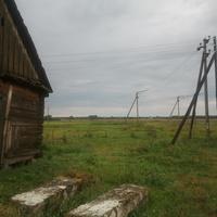 Лето в Радовне