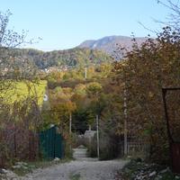 грунтовая дорожка по поселку