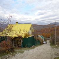 в поселке поздняя осень