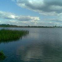 Лепельское озеро в районе д. Юрковщина