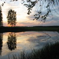 Малое Высоково - озеро в лесу