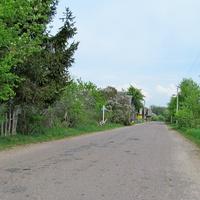 Улица деревни Лотевка.