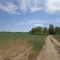 на хуторе в мае