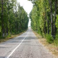 Дорога от шоссе к комплексу Гагаринское поле