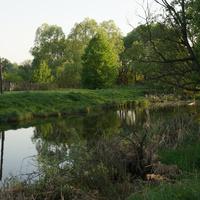 Речка Городенка