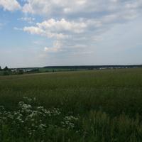 Поле у Ламоново