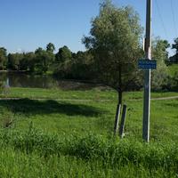Мартыновское, пруд