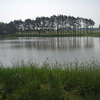 озеро возле замка