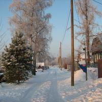 деревня Барсуки