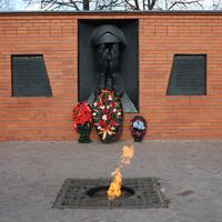 """Памятник """"Скорбящей матери"""" городской парк (старая часть города)"""