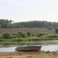 Берег Поляницы в Рыжово КП Дом у реки